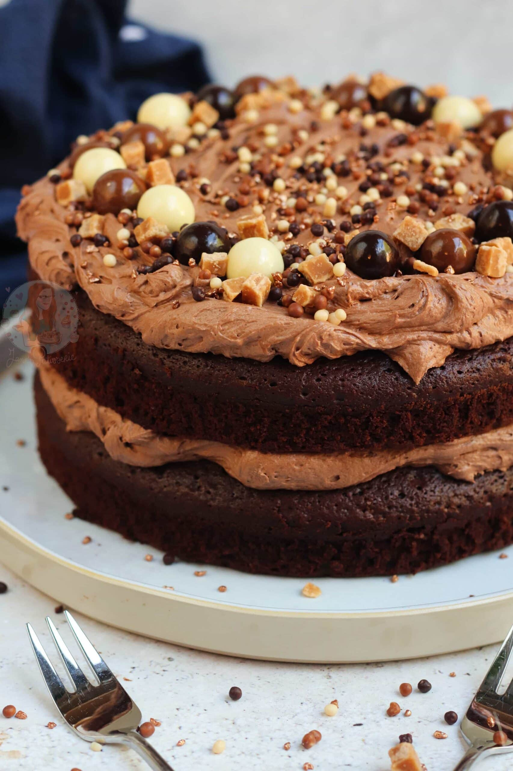 Chocolate Fudge Cake With The Best Chocolate Frosting Ever Jane S Patisserie